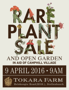 rare plant sale low res (1)